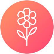 Menu Icon Spring