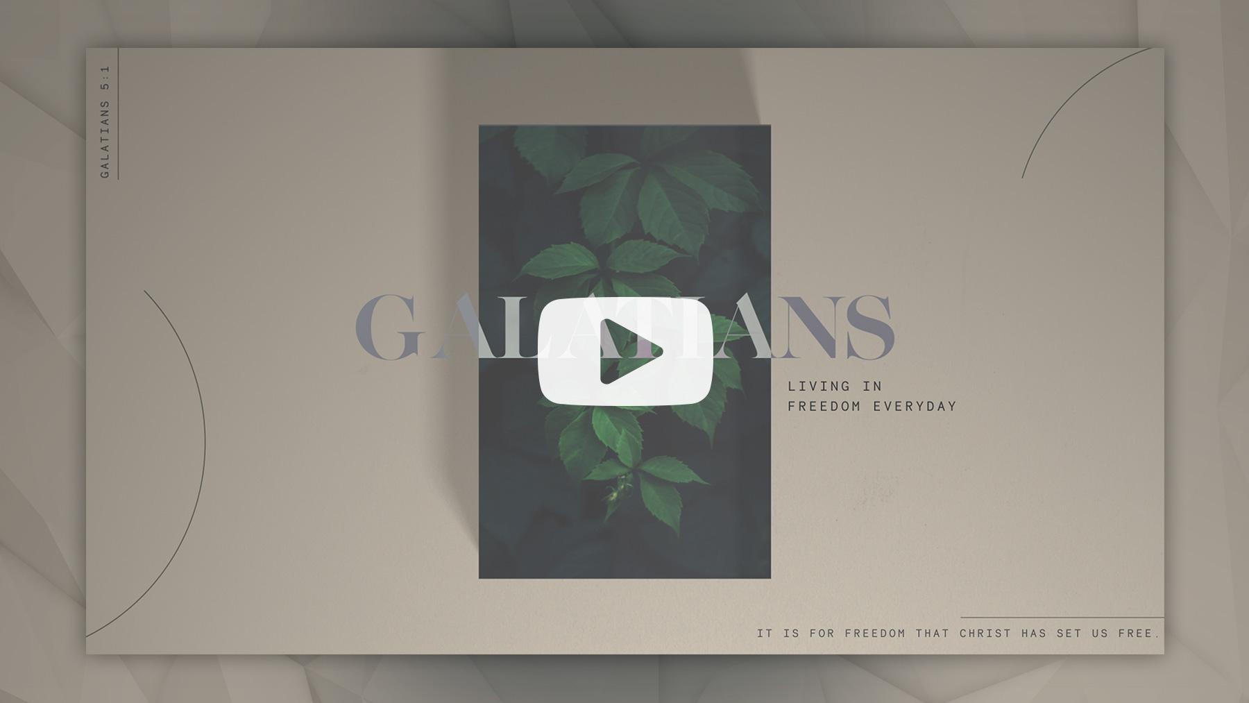 gala bumper video